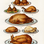 mrs beeton poultry, roast turkey clip art, game poultry illustration, cooked food clipart, vintage book plate