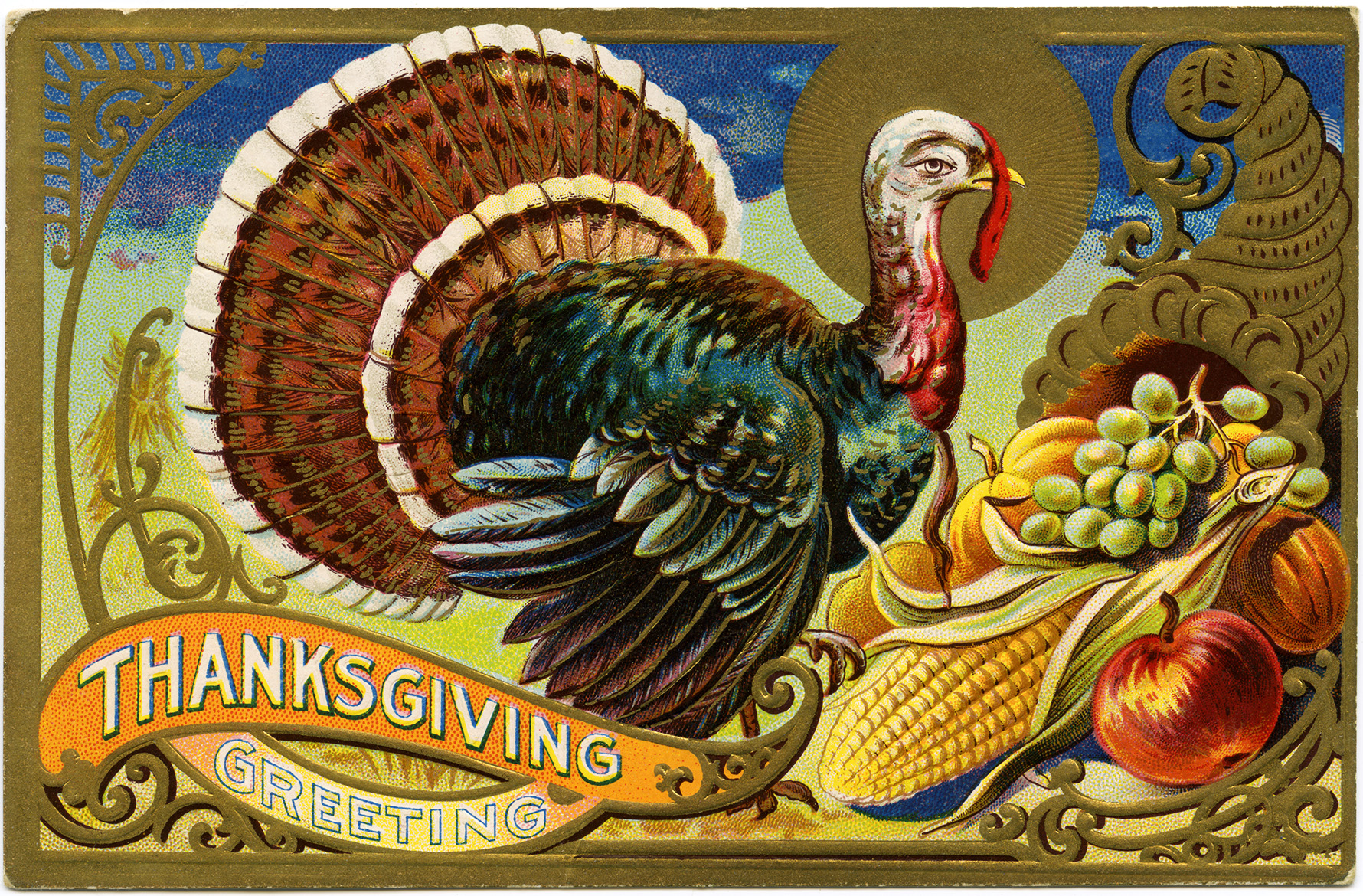 vintage Thanksgiving postcard, turkey clipart, antique holiday card, digital Thanksgiving graphics, old fashioned turkey cornucopia image