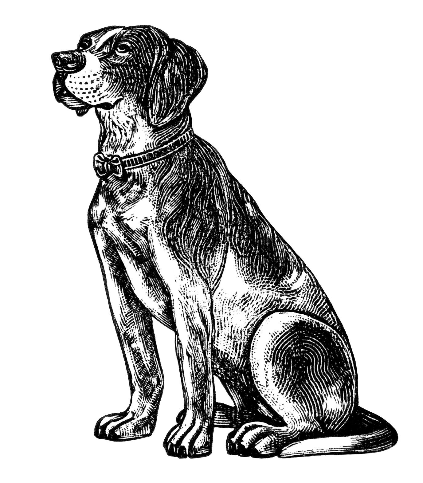 Free Vintage Dog Clip Art Old Design Shop Blog