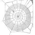 spiderweb clipart, vintage Halloween image, black and white clip art, spider on web illustration
