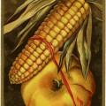 free vintage postcard graphic, thanksgiving clip art, corn pumpkin image, printable holiday card, digital fall graphics