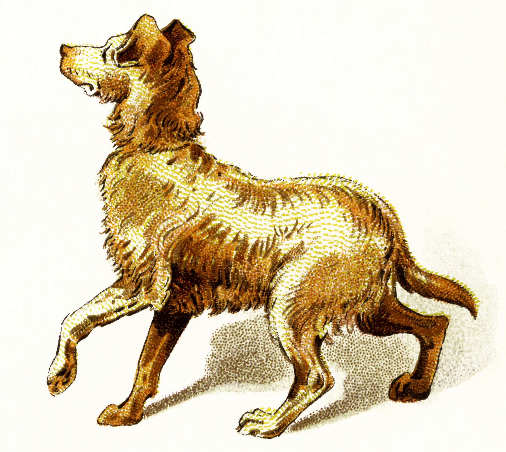 vintage dog clipart, golden brown dog image, brown pup clip art, dog walking illustration, printable puppy digital graphic