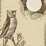 owl stationery, Lilac & Lavender
