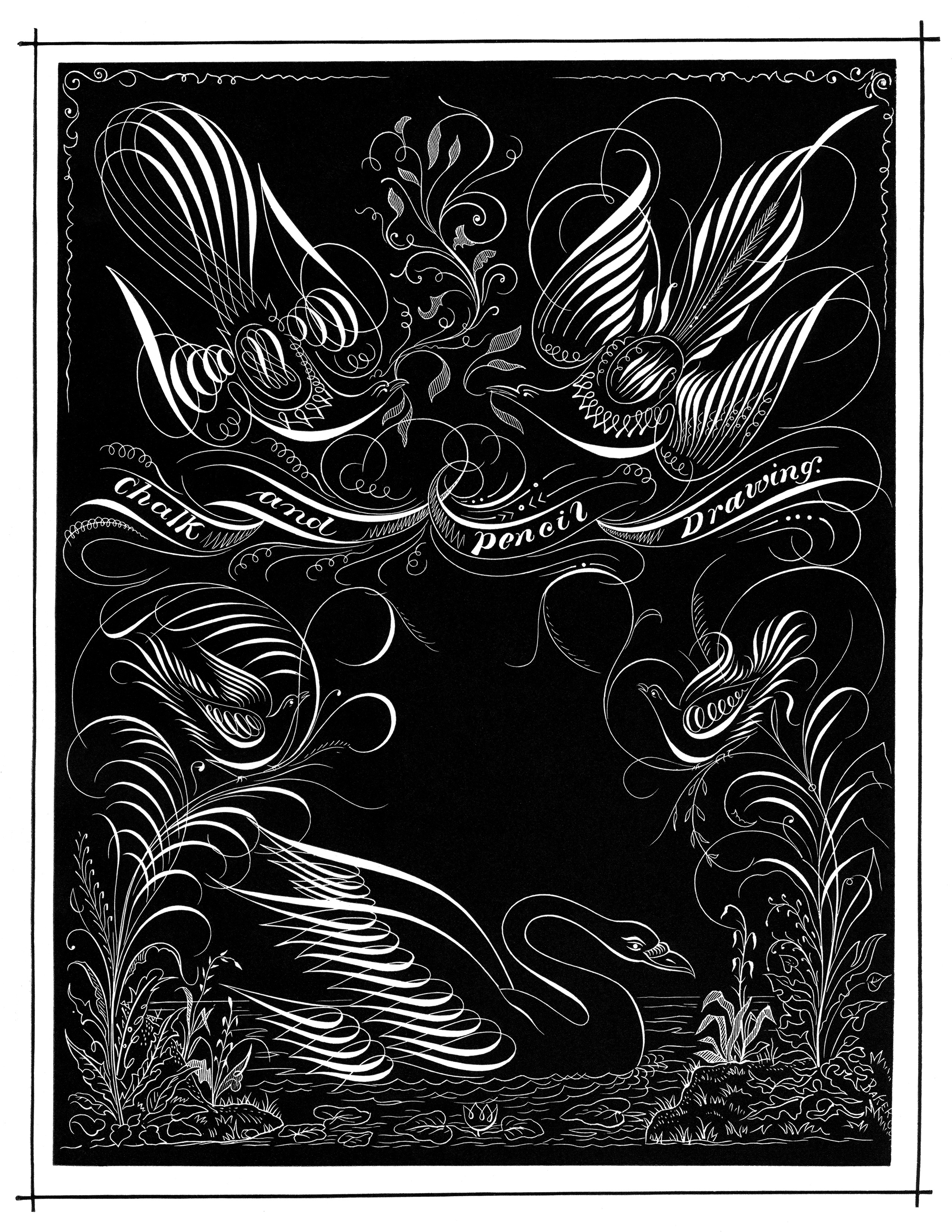 chalk and pencil drawing, swirl ornamental graphic, black and white clipart, flourish sketch bird swan image, vintage penmanship art