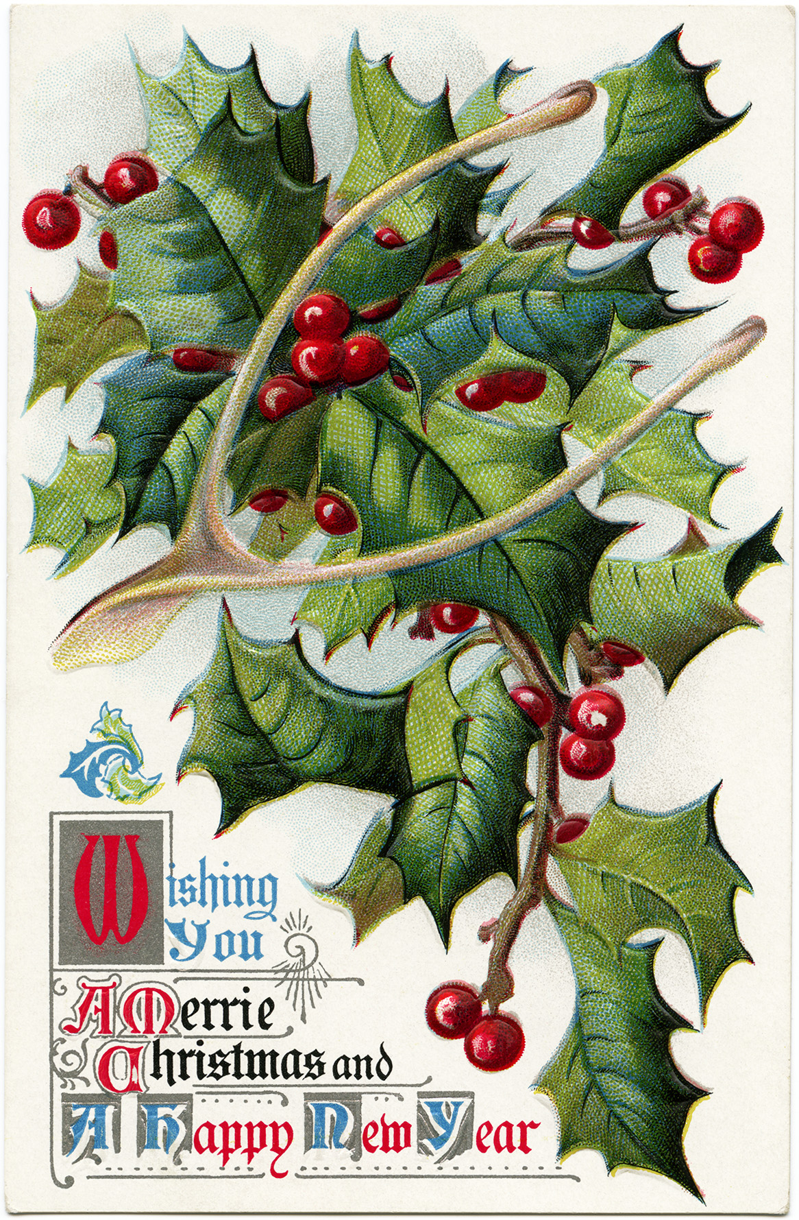 vintage christmas postcard, branch holly and berries, old fashioned wishbone postcard, merrie christmas greeting, antique holiday card image