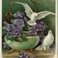 free vintage ephemera, digital download image, vintage postcard birds, purple flowers doves clipart, old fashioned postcard download