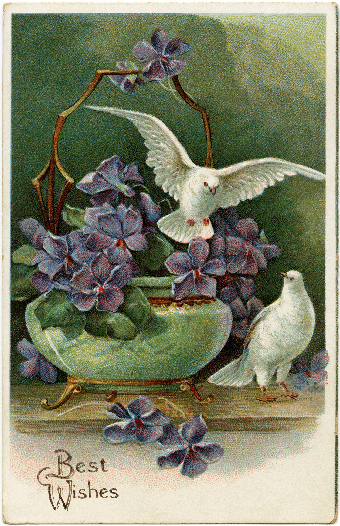 Purple Flowers And Doves Free Vintage Postcard Image