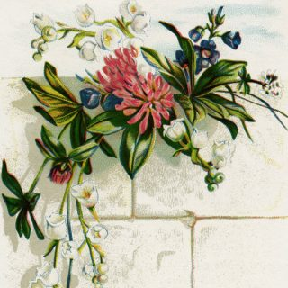 Free vintage clip art image cluster of flowers on white brick wall