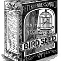 vintage bird clipart, black and white graphics, bird seed image, old advertising, vintage ephemera