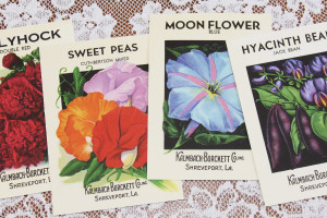 homes and antiques, magazine feature, vintage seed packet, old design shop