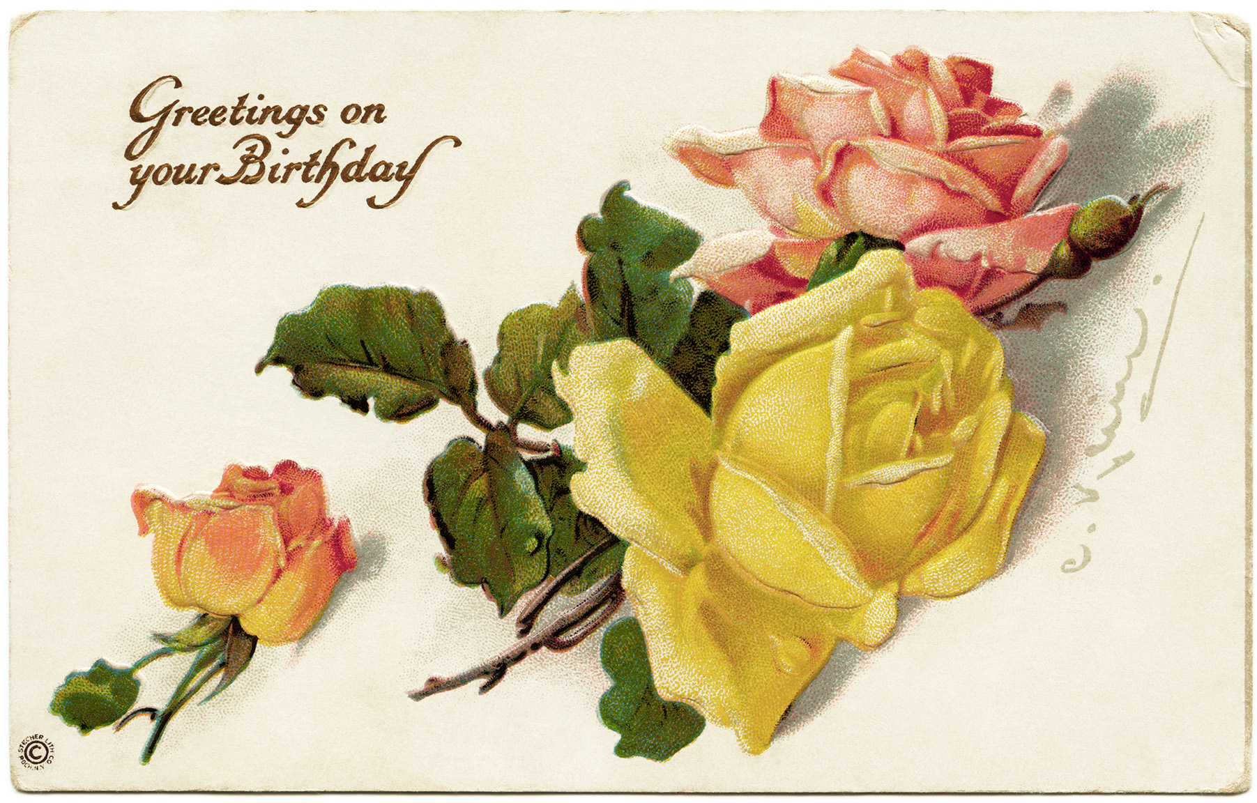 stecher postcard, catherine klein roses, antique birthday postcard, vintage birthday graphic, vintage flower clipart, old roses image