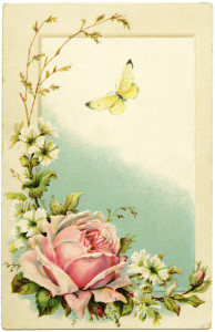 free vintage postcard, pink rose clipart, old postcard with flowers, butterfly clip art, printable antique postcard
