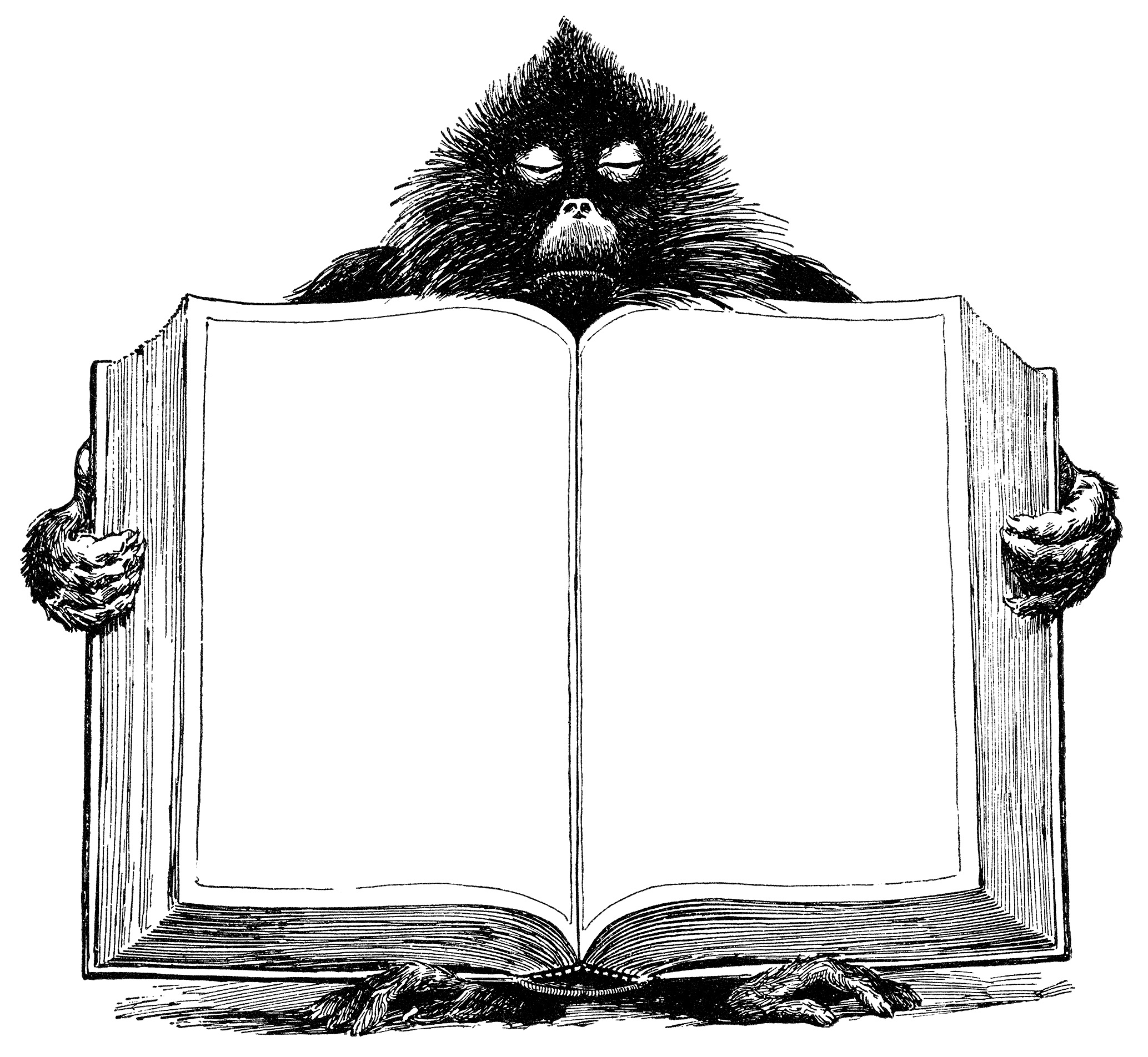 Old Fashioned Book Cover Clipart ~ Baboon holding open book free vintage clip art old