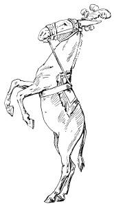 free vintage clip art circus horse illustration