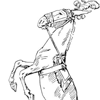 free vintage clip art circus horse illustration