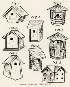 vintage bird house clipart, bird house diagram, birdhouse sketch, black and white clip art, free vintage bird graphics