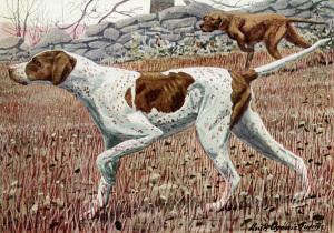 louis agassiz fuertes, pointer illustration, vintage dog clip art, pointer dog image