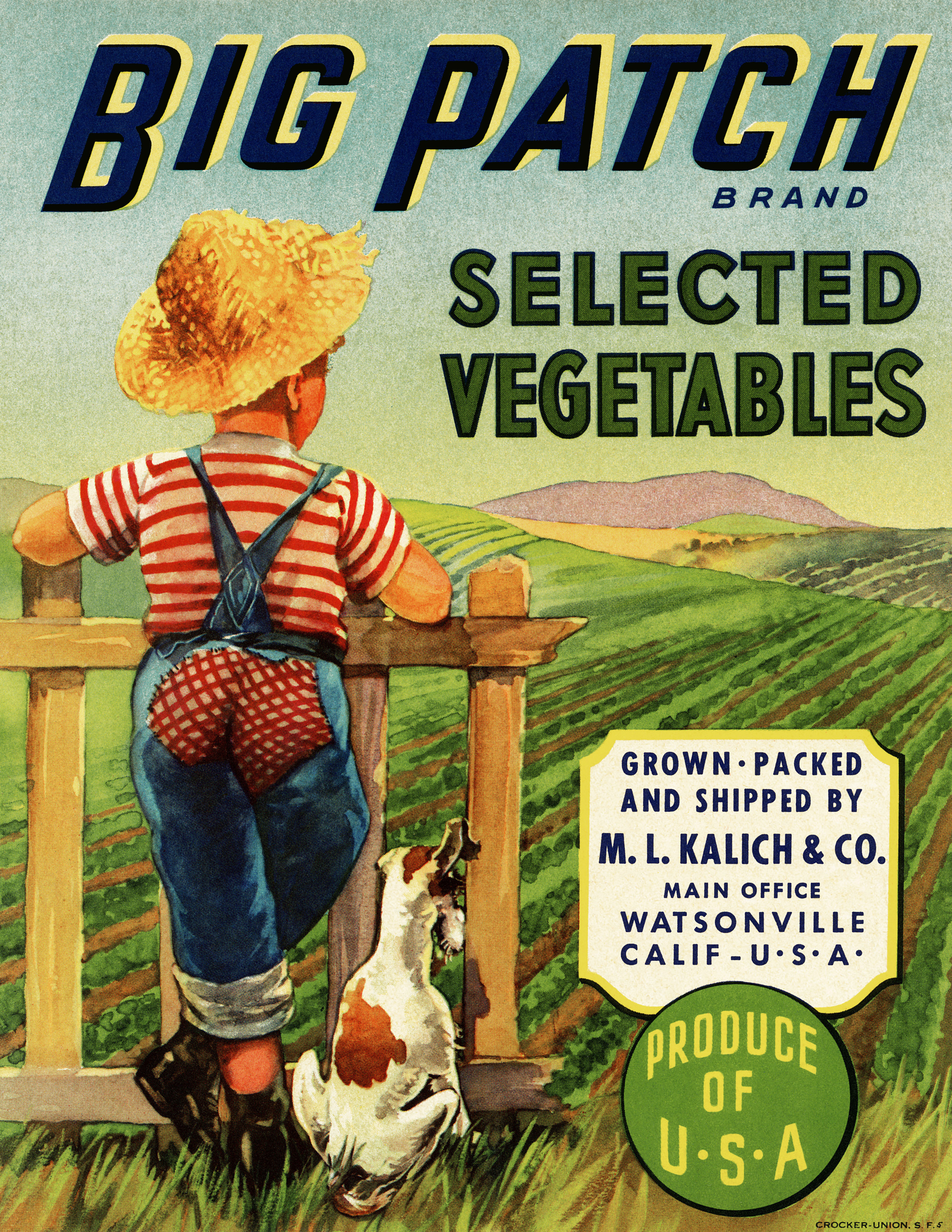vintage crate label, big patch vegetables, boy and dog illustration, old fashioned garden image, vegetable garden printable