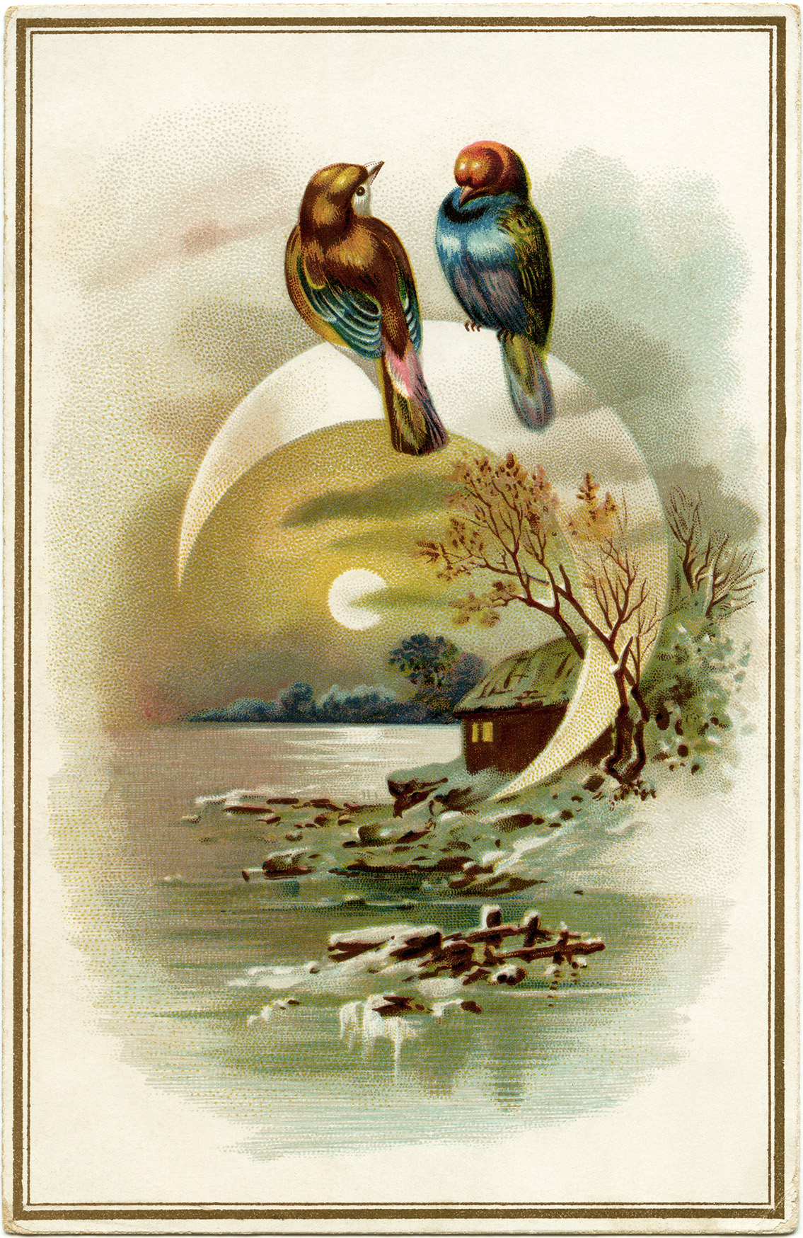 This is an image of Gorgeous Birds In The Moon Drawing