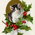 vintage Christmas postcard, vintage Christmas kitten, holly berries cat illustration, holiday pet graphic, old fashioned Christmas card