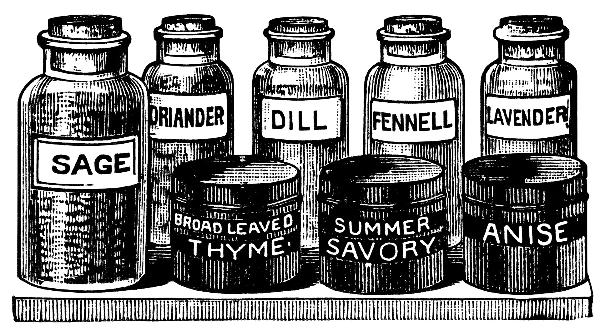 vintage herb clipart, black and white graphics, old advertising ephemera, vintage kitchen clip art, bottled herbs illustration