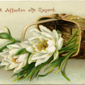Victorian flower card, vintage flower clip art, white flowers in basket, antique floral illustration, old fashioned card