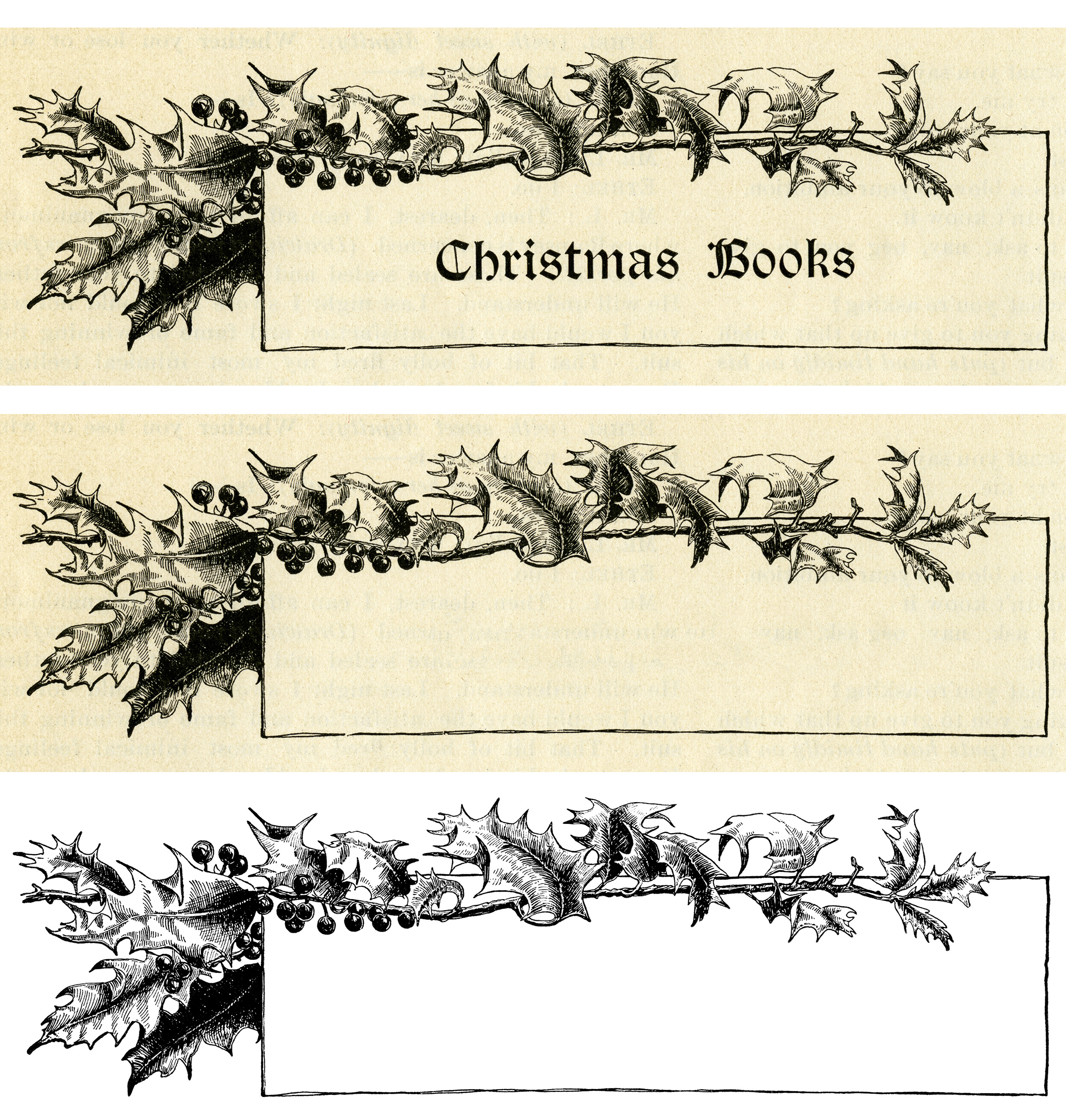 Holly and Berries Frame ~ Free Vintage Image