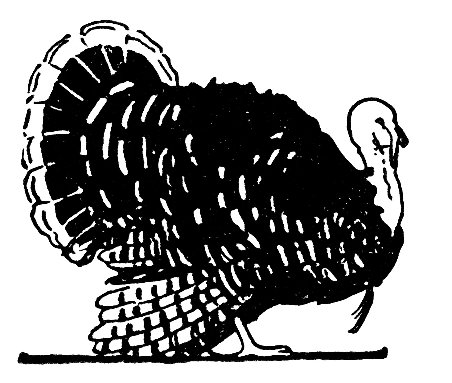 Thanksgiving Clip Art Vintage Turkey Illustration Black And White Graphics Free Printable