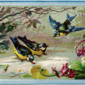 vintage bird clip art, birds in snow illustration, blue yellow birds, junk journal printable, winter bird graphics