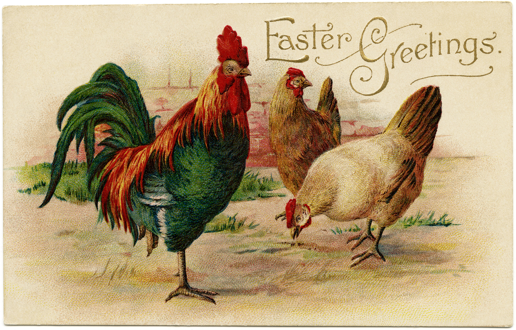vintage easter postcard, rooster hen clip art, old fashioned easter card, printable chicken graphics, antique rooster hen easter greeting