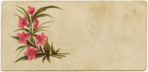 Free vintage clip art Victorian calling card flowers