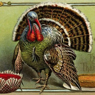 Thanksgiving Turkey Postcard Digital