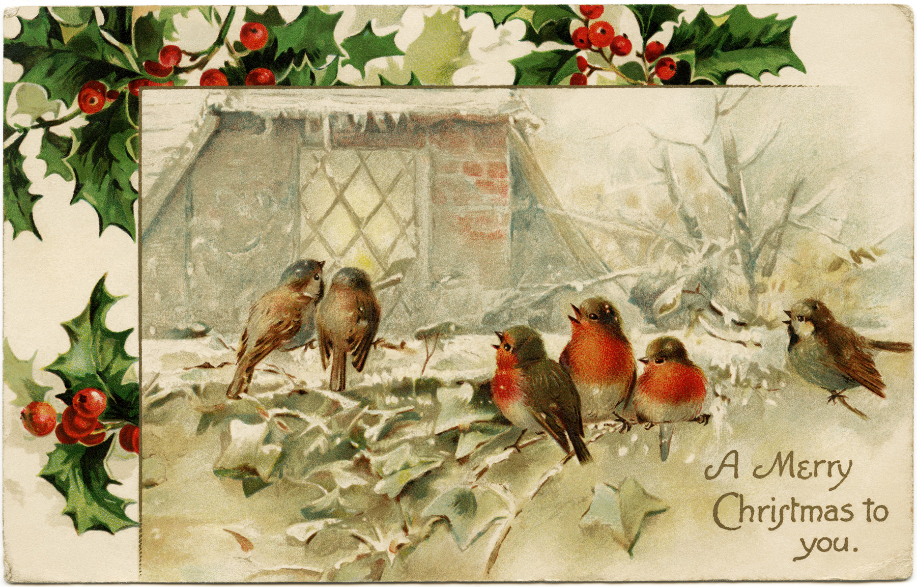 Birds and Holly Christmas Clip Art - Old Design Shop Blog