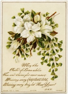 Raphael Tuck, antique Christmas card, bouquet of lilies, vintage lily illustration, Christmas clip art