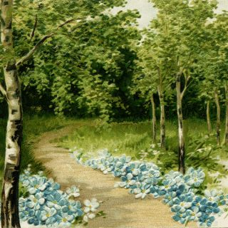 Free vintage clip art flower lined path in woods postcard image