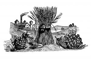 Free vintage fall clip art sheaf of wheat fruit vegetable harvest