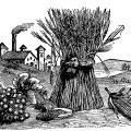 Free vintage fall clip art sheaf of wheat fruit vegetable harvest