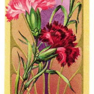 vintage perfume label, toilet water, vintage beauty clip art, Victorian perfume clip art, phil eisemann