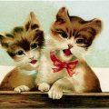 singing kitten, vintage cat postcard, kitten clip art, brown cat