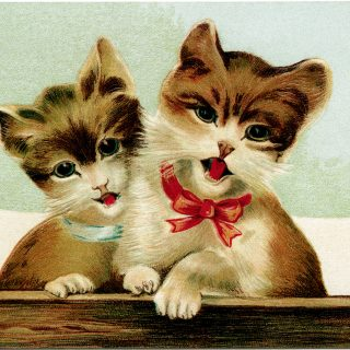 singing kitten, vintage cat postcard, kitten clip art, brown cat