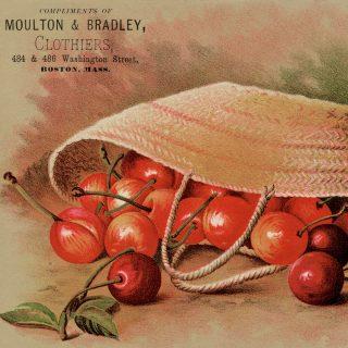 Free Printable Vintage Trading Card Cherries