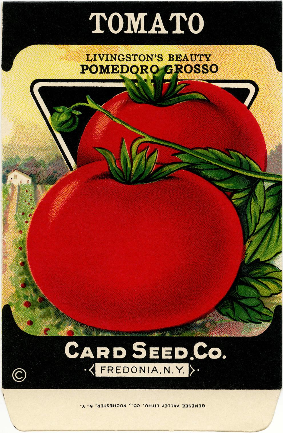 free vintage clip art tomato seed packet old design shop blog rh olddesignshop com carrot seed packet clipart seed packet clipart