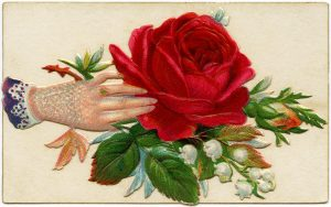 Free vintage clip art Victorian calling card hand rose
