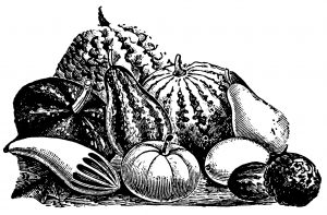 vintage black and white gourd engraving