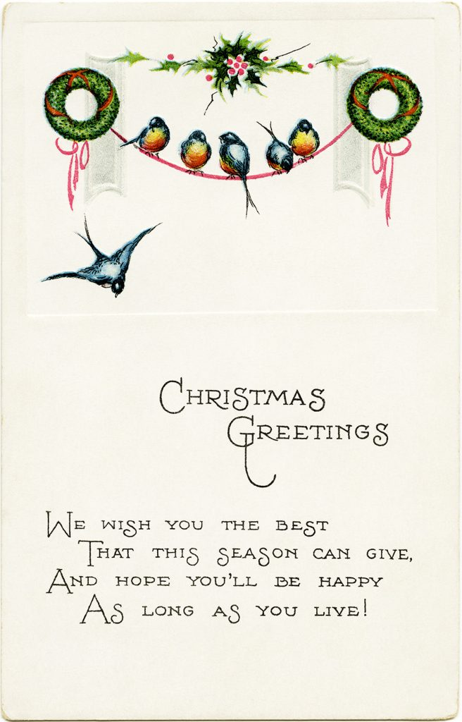 Free vintage Christmas birds postcard image