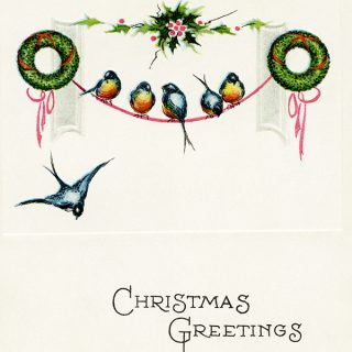 Vintage Birds Christmas Postcard