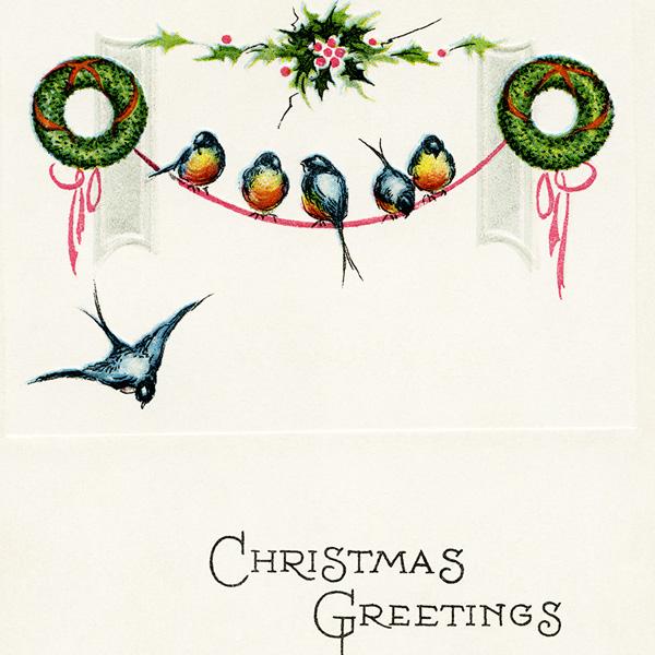 vintage birds christmas postcard