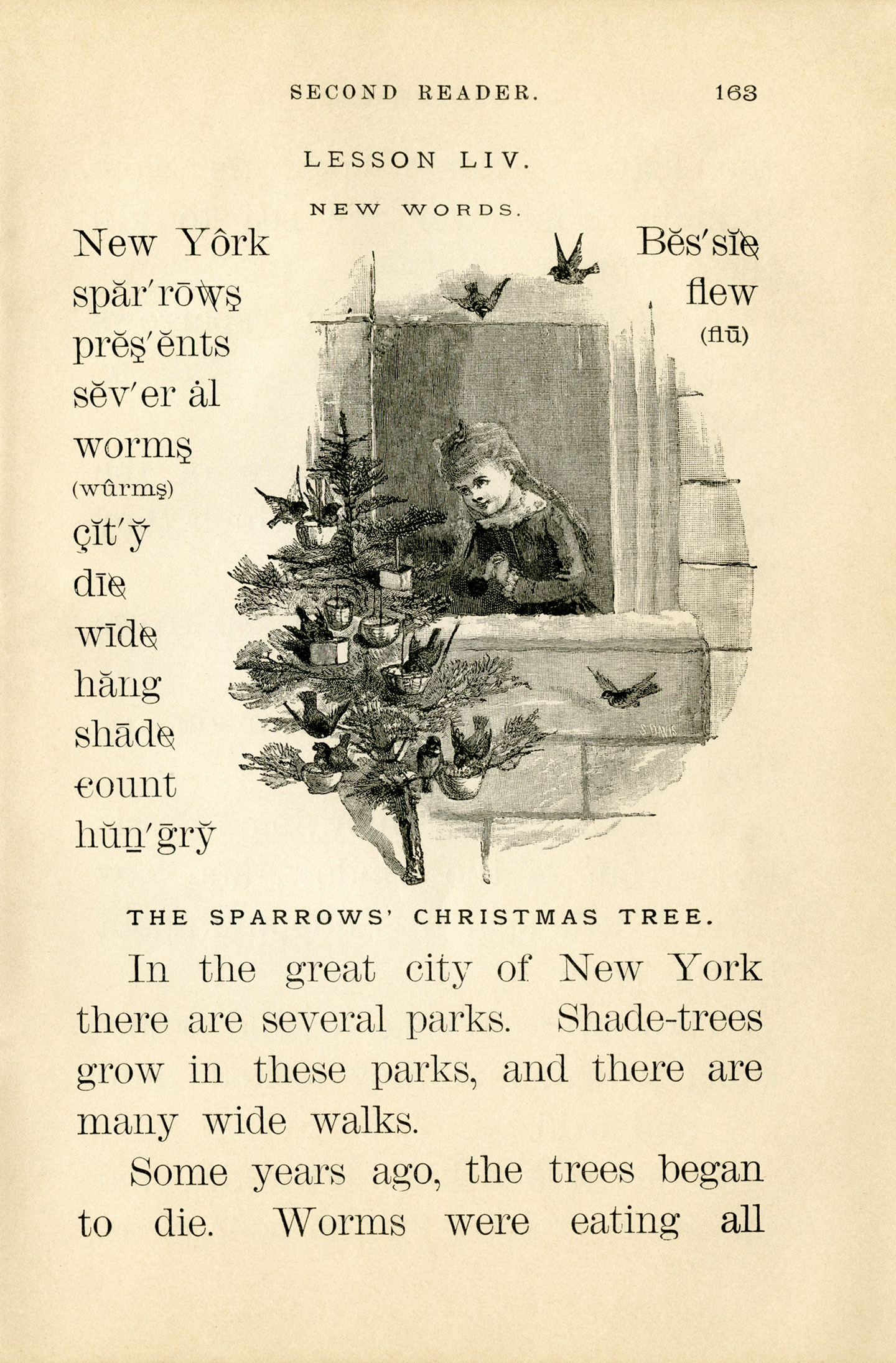 Sparrows Christmas Tree Vintage Story