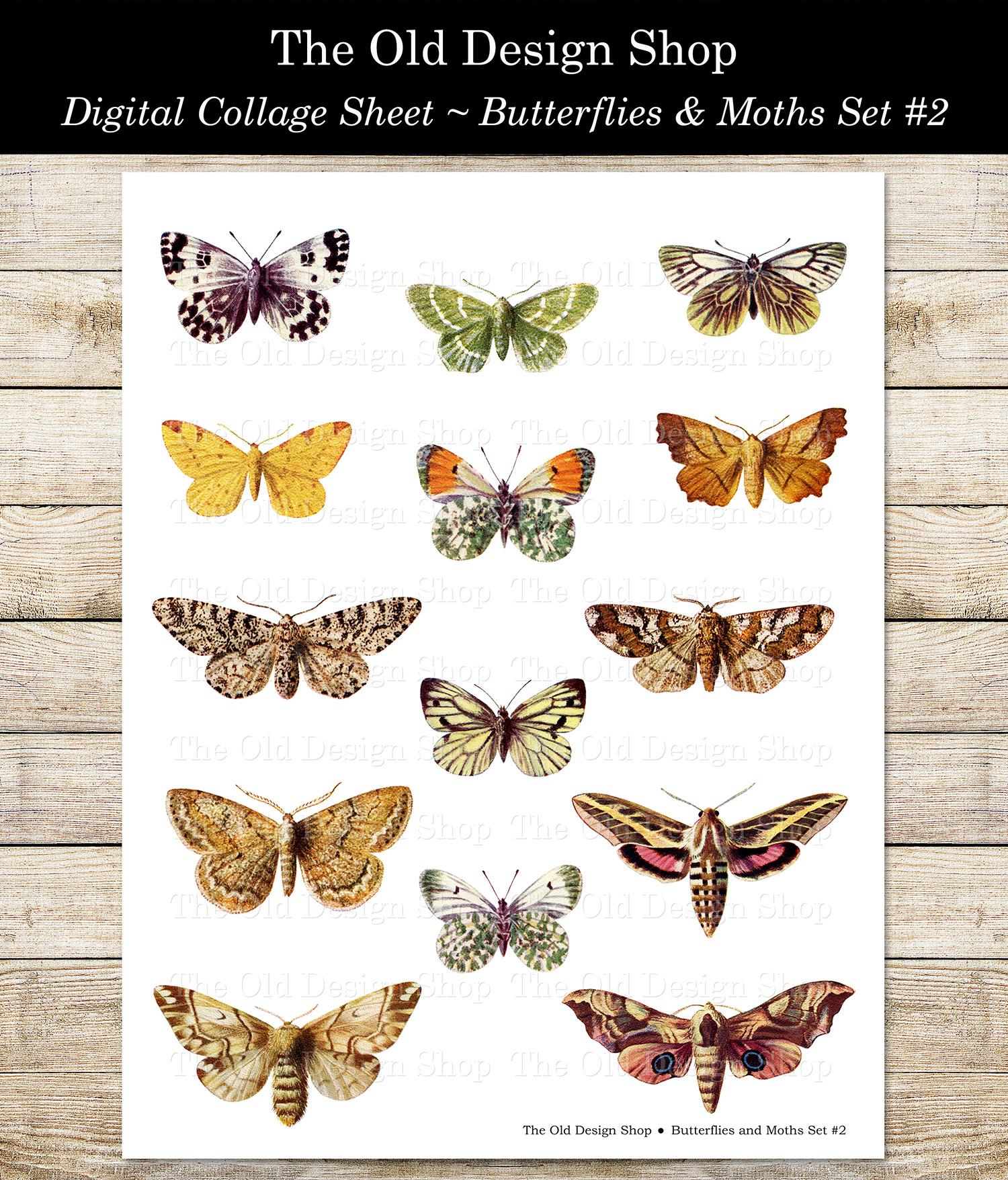 digital collage sheet butterflies