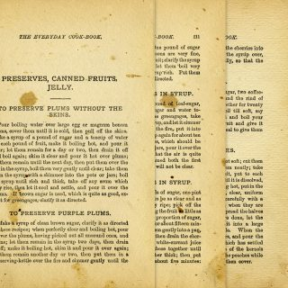 vintage preserves recipes cookbook page
